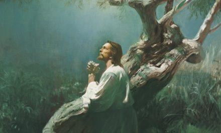 ゲッセマネの園で、キリストは何を感じられたのか