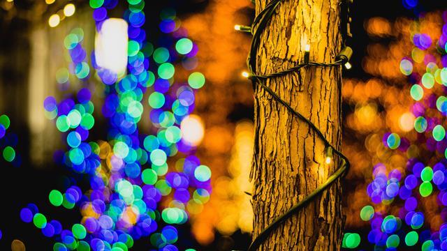 テンプルスクエアのクリスマスライト