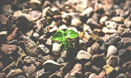 神への信仰を強めるための5つの習慣