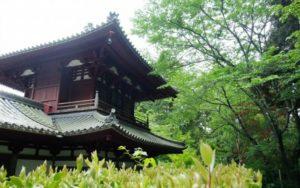 自然の中に建つお寺