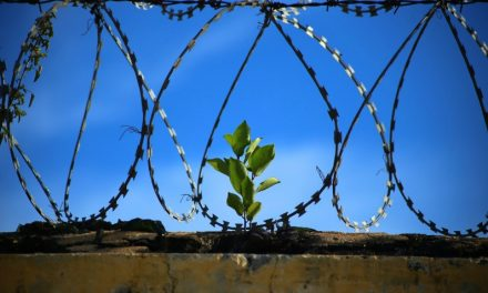 末日聖徒の両親「刑務所で伝道する」息子を支え、愛する