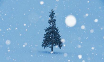 クリスマス―我が家の伝統