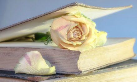最もロマンティックな16の聖句