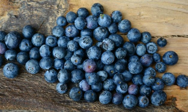 モルモン教の決まり:健康な食生活
