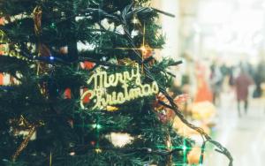 通りに置いてあるクリスマスツリーにあるメリークリスマスのメッセージ