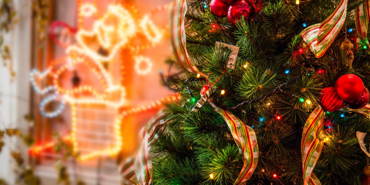 今年は今までで最高のクリスマスにする!!