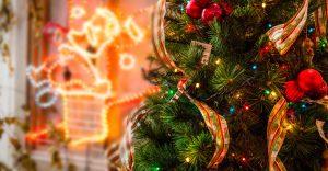 イルミネーションが輝く中にあるクリスマスツリー
