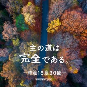 主の道 詩篇18章30節